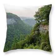 Archery Field Overlook Throw Pillow