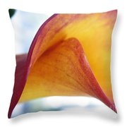 Archimedes Inspiration Throw Pillow