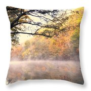 Arching Tree On The Current River Throw Pillow