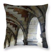 Architectural Artwork At Place De Vosges Throw Pillow