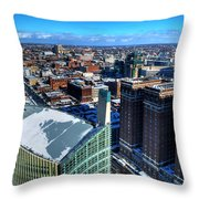 Architectural Variances Winter 2013 Throw Pillow