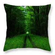Archway Of Light Throw Pillow