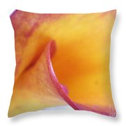 Arcing To Its Own Interior Throw Pillow