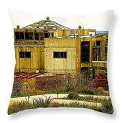 Arcosanti II Throw Pillow