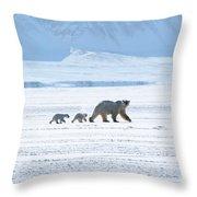 Arctic Family Throw Pillow
