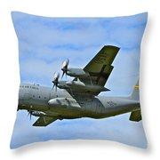 Arctic Flight Throw Pillow