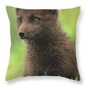 Arctic Fox Portrait Alaska Wildlife Throw Pillow