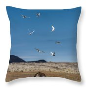 Arctic Terns With Mare And Foal Throw Pillow