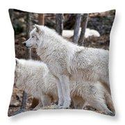Arctic Wolf Pair Throw Pillow