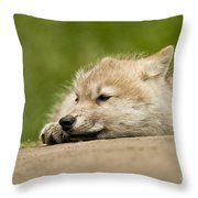 Arctic Wolf Pictures 1121 Throw Pillow