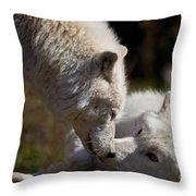 Arctic Wolf Pictures 1139 Throw Pillow