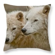 Arctic Wolf Pictures 1174 Throw Pillow