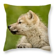 Arctic Wolf Pictures 340 Throw Pillow