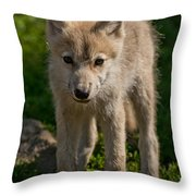 Arctic Wolf Pictures 345 Throw Pillow