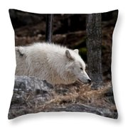 Arctic Wolf Pictures 541 Throw Pillow