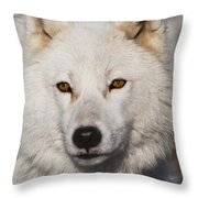 Arctic Wolf Pictures 814 Throw Pillow