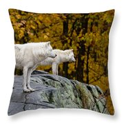 Arctic Wolf Pictures 930 Throw Pillow