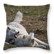 Arctic Wolf Pictures 996 Throw Pillow