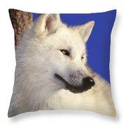 Arctic Wolf Portrait Wildlife Rescue Throw Pillow