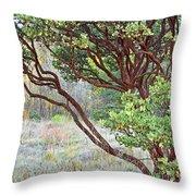 Arctostaphylos Hybrid Throw Pillow