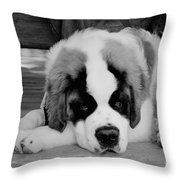 Are We Done Yet Throw Pillow