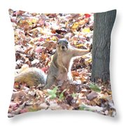 Are You Looking At Me ? Throw Pillow