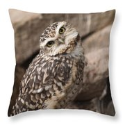 Are You Looking At Me? Throw Pillow