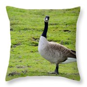 Are You Talking To Me Throw Pillow