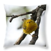 Are You Watching Me Throw Pillow