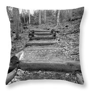 Arethusa Falls Mountain Trail Throw Pillow by Catherine Reusch Daley
