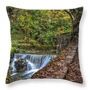 Areuse Gorge Throw Pillow