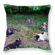 Argentina Cat Park Throw Pillow