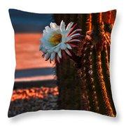Argentine Cactus Throw Pillow