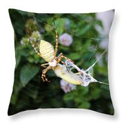 Argiope Spider Top Side Horizontal Throw Pillow