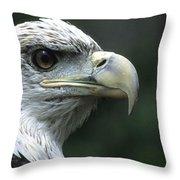 Aristocratic Bald Eagle Throw Pillow