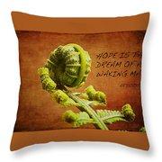 Aristotle Quote Throw Pillow