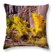 Arizona Autumn Colors Throw Pillow