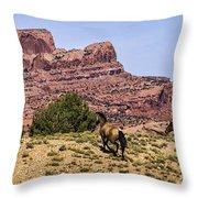 Arizona Beauties Throw Pillow