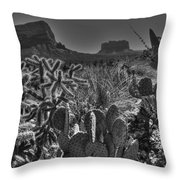 Arizona Bell Rock Valley N6 Throw Pillow