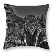 Arizona Bell Rock Valley N9 Throw Pillow