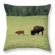Arizona Bison Throw Pillow