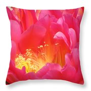 Arizona Cactus Beauty Throw Pillow