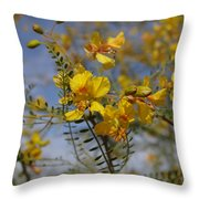 Arizona Gold Throw Pillow