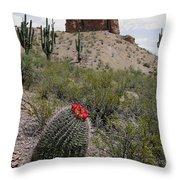 Arizona Icons Throw Pillow