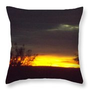 Arizona Landscape Throw Pillow