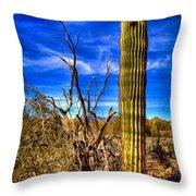 Arizona Landscape IIi Throw Pillow
