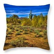 Arizona Landscape Iv Throw Pillow