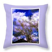 Arizona Mesa Through A Mesquite Tree Throw Pillow