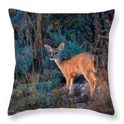 Arizona Deer Sunset Throw Pillow