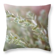 Arizona Sage Throw Pillow